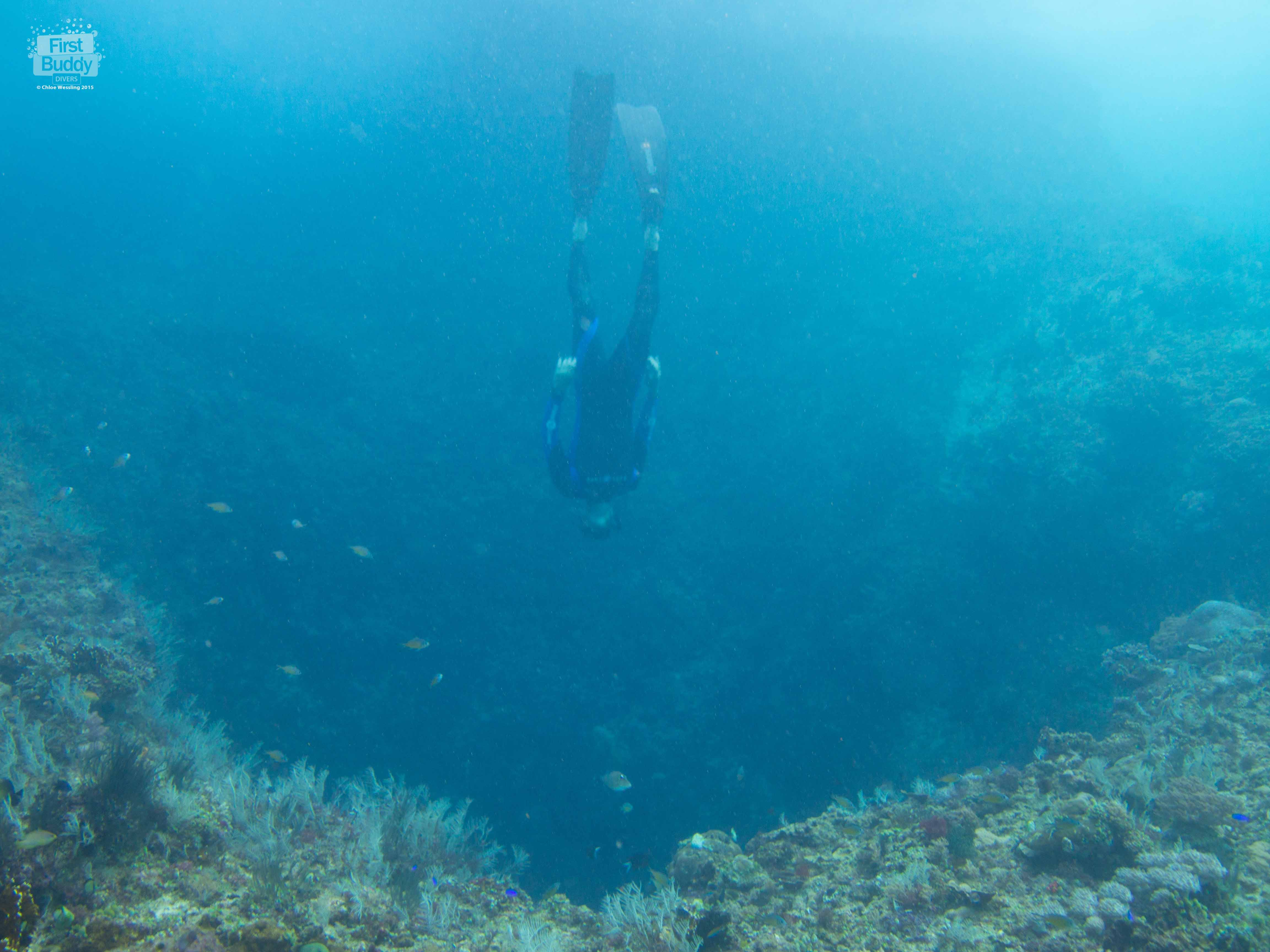Freediver enters the Blue Hole of Tablas Island
